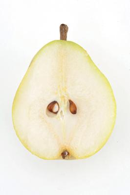 pnl-la-dieta-3