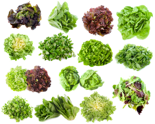 Deliciosas verduras que le darán un toque diferente a tus comidas