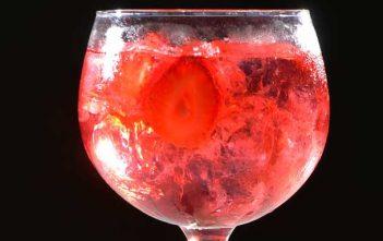 ginebra-frutos-rojos