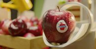 """""""La vida es más fácil con manzanas"""" nueva campaña de Manzanas Washington"""